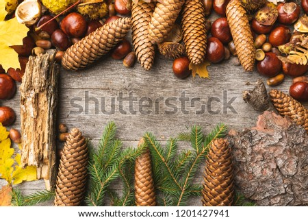 Autumn arrangement, concept still life with chestnuts, cones, acorns, leaves, bark, fir, pine tree on wooden background. Seasonal frame from autumn harvest. Flat-lay visualization with copy space #1201427941