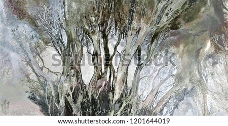 the enchanted forest, tribute to Pollock, abstract photography of the deserts of Africa from the air, aerial view, abstract expressionism, contemporary photographic art, abstract naturalism,