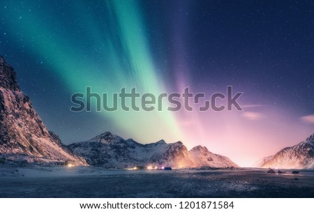 Green and purple aurora borealis over snowy mountains. Northern lights in Lofoten islands, Norway. Starry sky with polar lights. Night winter landscape with aurora, high rocks, beach. Travel. Scenery #1201871584