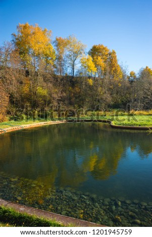 Image of golden autumn in  Moscow region, Russia #1201945759