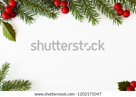 Background for Christmas and new year cards with a branch of spruce and red berries. Isolated. Copy space. #1202171047