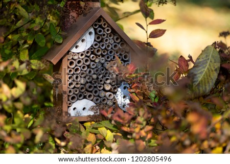 Colorful wooden hotel for insects in the garden among autumn leaves. #1202805496