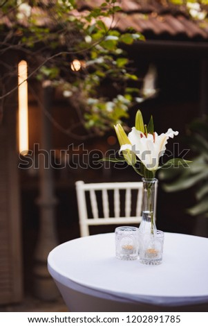 Outdoor photography - wedding / tea garden setting with white tables and chairs covered in greenery