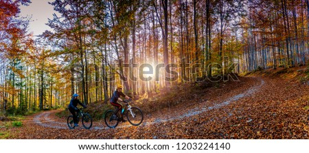 Cycling, mountain biker couple on cycle trail in autumn forest. Mountain biking in autumn landscape forest. Man and woman cycling MTB flow uphill trail. #1203224140