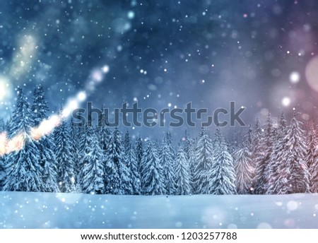 Starry sky in winter snowy night. Fantastic milky way in the New Year's Eve. Beautiful landscape and snow-covered pines on mountain slopes. Bokeh light effect, soft filter. Photo greeting card. #1203257788