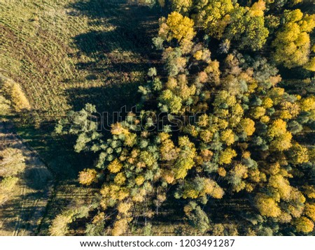 drone image. aerial view of rural area with fields and forests in cloudy autumn day with yellow colored fall trees #1203491287