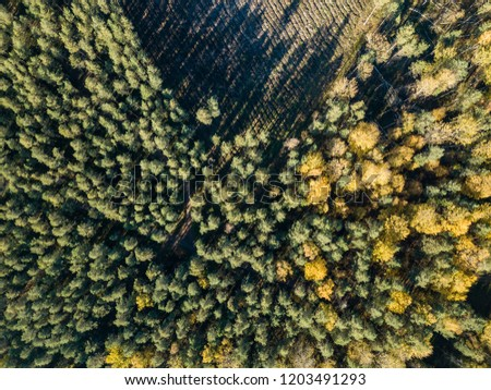 drone image. aerial view of rural area with fields and forests in cloudy autumn day with yellow colored fall trees #1203491293