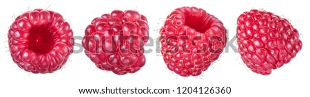 Set of four ripe raspberries isolated on white background. Organic food. #1204126360