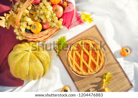 basket of fruits (apples, persimmon, grapes, pomegranates), melon and cake against background of autumn trees #1204476883