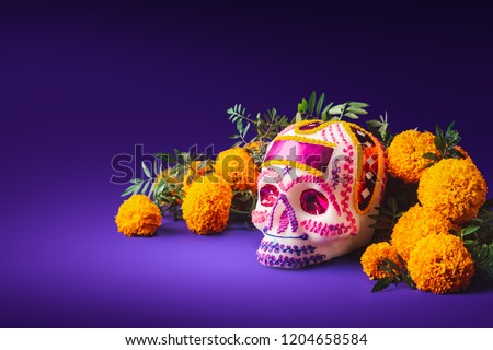 "High contrast image of a sugar skull used for ""dia de los muertos"" celebration in a purple background with cempasuchil flowers Royalty-Free Stock Photo #1204658584"