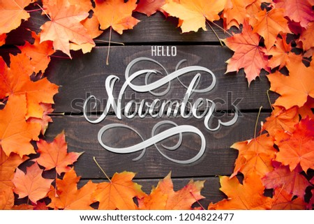 Hello November hand lettering inscription with orange and red maple leaves frame on old wooden background. Autumn decor, fall mood. Royalty-Free Stock Photo #1204822477