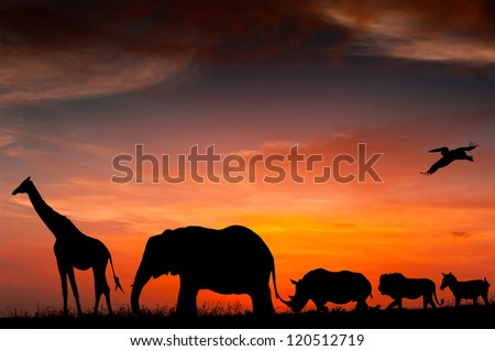 Silhouettes of African animals against the sunset #120512719