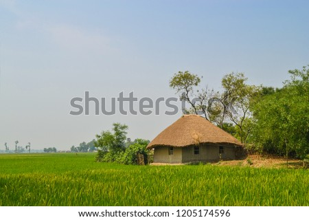 beautiful house of Indian village Royalty-Free Stock Photo #1205174596