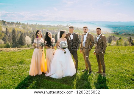 Portrait of newlywed couple having fun with bridesmaids and groomsmen in green sunny park. Before wedding ceremony. Behind blue sky and mountains