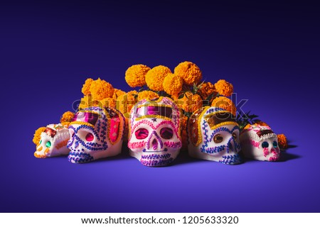 "High contrast image of sugar skulls used for ""dia de los muertos"" celebration in a purple background with cempasuchil flowers #1205633320"