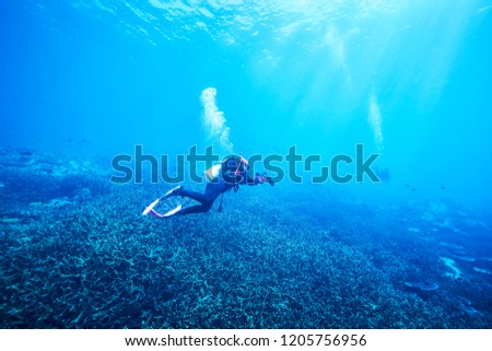 adventure underwater with the best diving spot at Losin south of Thailand  #1205756956