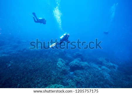 adventure underwater with the best diving spot at Losin south of Thailand  #1205757175