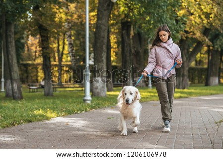 young woman walking with guide dog in park #1206106978
