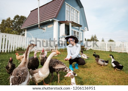 A young girl feeds domestic birds, ducks, hens, geese, turkeys in the yard of a rural house. Farmer, agriculture. #1206136951