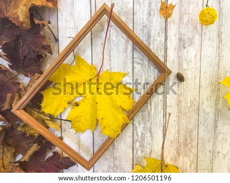 Wooden rectangular picture frame and yellow colorful natural autumn leaves, maple on the background of wooden boards. The background. Texture.