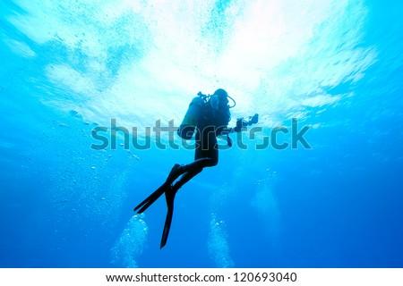 Diver rising #120693040