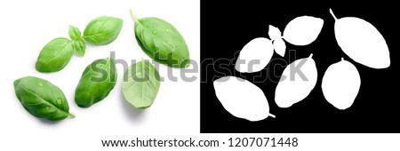 Basil leaves (Ocimum basilicum), top view. Clipping paths, shadows separated #1207071448