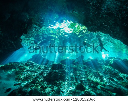 Cenote scuba diving, underwater cave in Mexico #1208152366