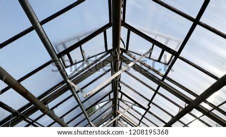 transparent roof and metal structures of the greenhouse. Open glass ventilation windows on a conservatory #1208195368