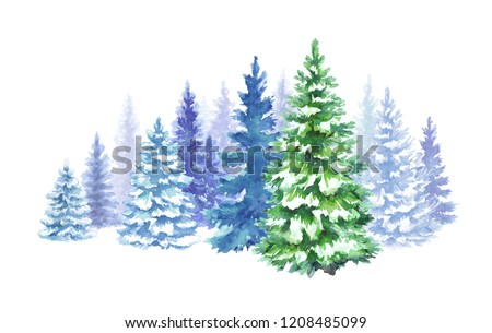 watercolor winter forest illustration, Christmas fir trees, frozen nature, conifer, holiday background, rural landscape, outdoor scene, isolated on white background
