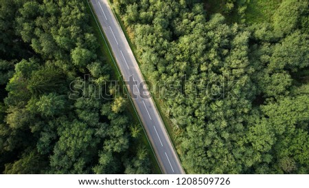 Drone view of road through forest. #1208509726