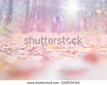 Autumn sport bike activity bokeh landscape background #1208534362