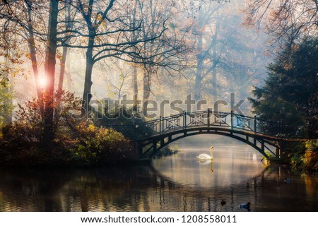 Scenic view of misty autumn landscape with beautiful old bridge with swan on pond in the garden with red maple foliage. #1208558011