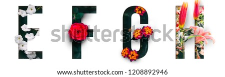 Flower font Alphabet e, f, g, h, made of Real alive flowers with Precious paper cut shape of letter. Collection of brilliant flora font for your unique decoration in spring, summer & many concept idea #1208892946
