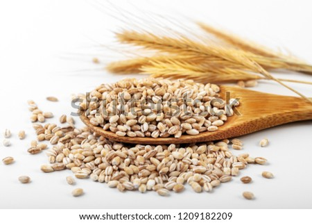 pearl barley in wooden spoon on white background #1209182209