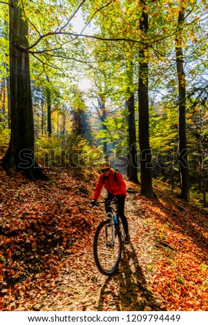 Mountain biking woman riding on bike in autumn mountains forest landscape. Woman cycling MTB enduro flow trail track. Outdoor sport activity. #1209794449
