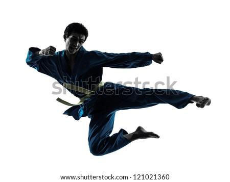 one asian man exercising karate vietvodao martial arts in silhouette studio isolated on white background Royalty-Free Stock Photo #121021360