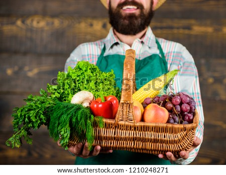 Man bearded gardener presenting eco vegetables wooden background. Fresh organic vegetables in wicker basket. Farmer presenting fresh vegetables. Farmer with homegrown vegetables in basket. #1210248271