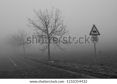 Misty road with road-signs #1210354432