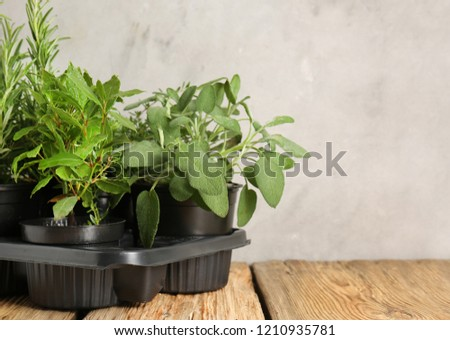 Pots with fresh aromatic herbs on wooden table #1210935781