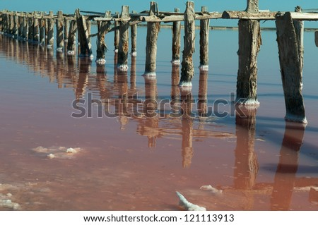 Surface of salt lake is multicolored. Woods stick out of the water. #121113913