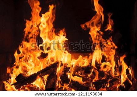 hot flames close-up. Black background #1211193034