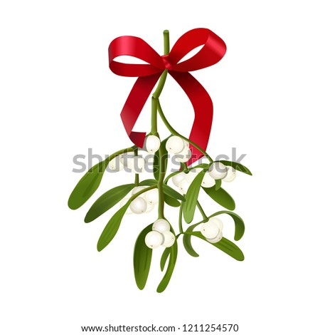 Mistletoe. Vector illustration of hanging mistletoe sprigs with with berries and red bow isolated on white #1211254570