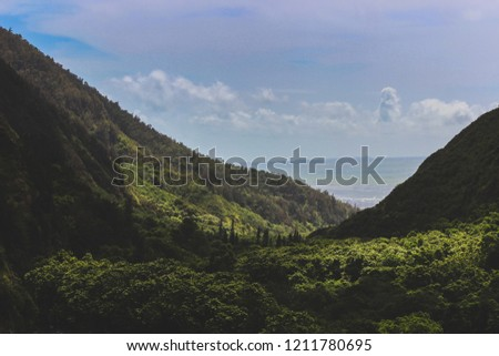 Beautiful elevated view of lush green Iao Valley with seascape in the distance, Iao Valley State Park, Wailuku, Maui, Hawaii #1211780695