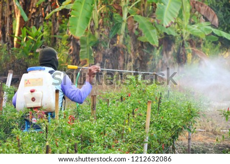 Phitsanulok province/Thailand - Oct 11 2018 ; A countryside farmer come to local pepper garden.Afterward he spraying insecticides to protect Insect and agricultural pests. #1212632086