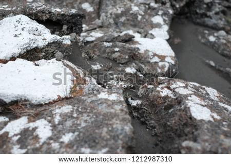 White lichen on the rocks  #1212987310