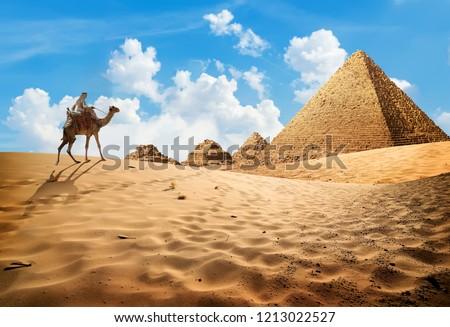 Bedouin on camel near pyramids in desert #1213022527