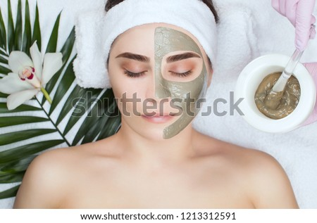 The procedure for applying a mask from clay to the face of a beautiful woman. Spa treatments and care of the face in the beauty salon. #1213312591