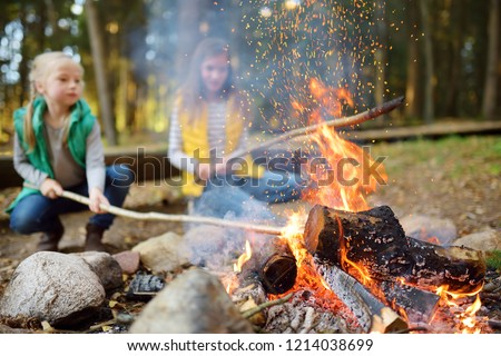 Cute little sisters roasting hotdogs on sticks at bonfire. Children having fun at camp fire. Camping with kids in fall forest. Family leisure with kids at autumn. #1214038699