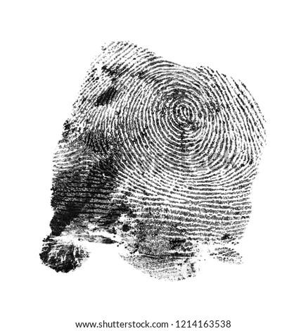 Black fingerprint pattern isolated on white background #1214163538