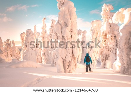 Landscape of Lapland, frozen trees, person walking, winter time #1214664760